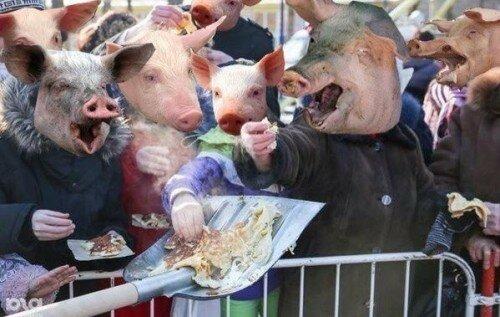 Как управлять стадом голодных свиней